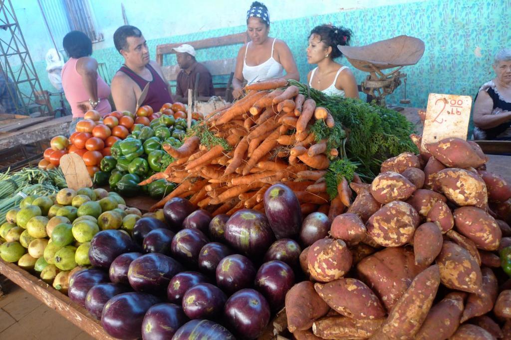 Utvalet av frukt og grønnsaker auker jamnt og trutt. Utfordringa er at mange ikkje har råd til å handle.